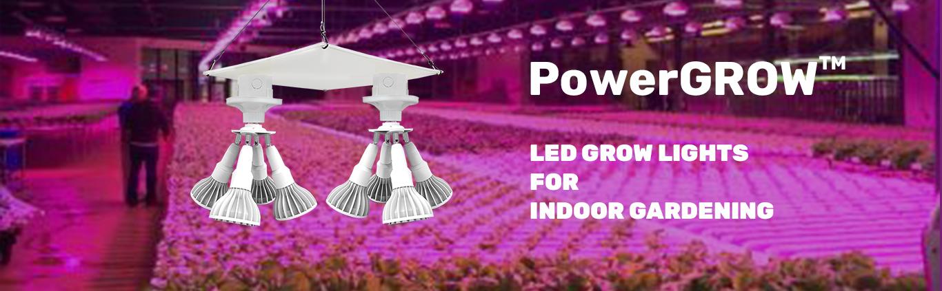 category-grow lights-Mingfa Tech-img-1